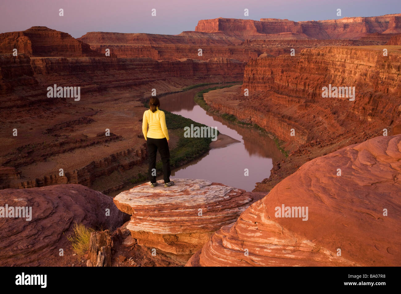 A visitor views the Colorado River from Potash Road Island in the Sky District Canyonlands National Park near Moab - Stock Image