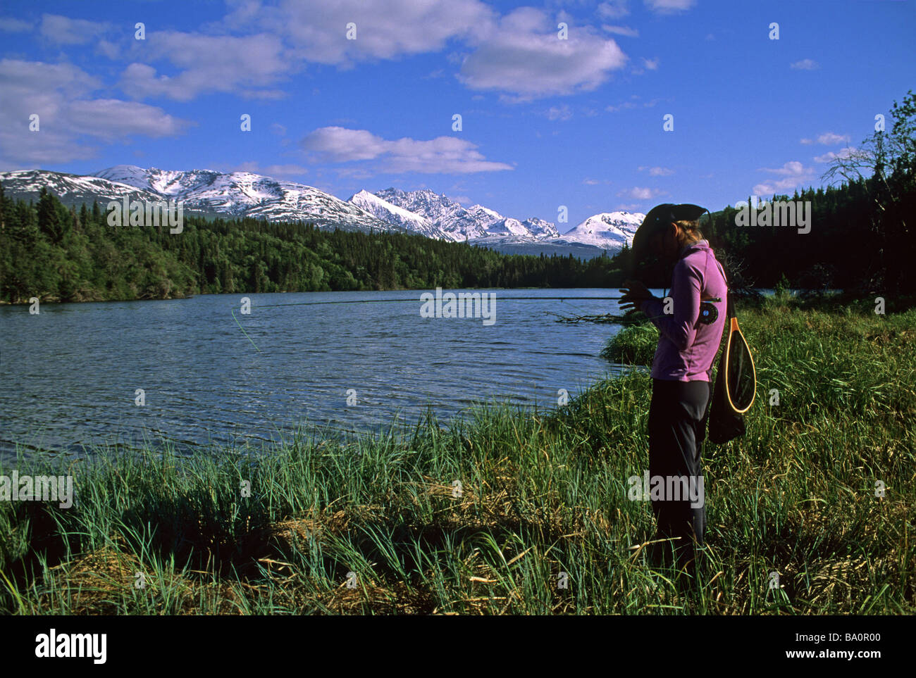 a woman fly fisherman ties on a fly for grayling in a alpine lake in alaska Stock Photo