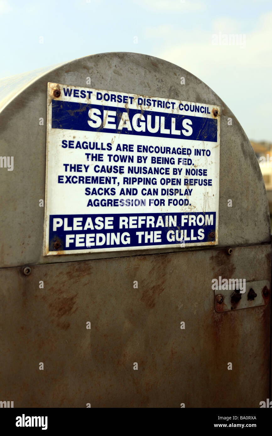 Feed The Seagulls Stock Photos & Feed The Seagulls Stock Images - Alamy