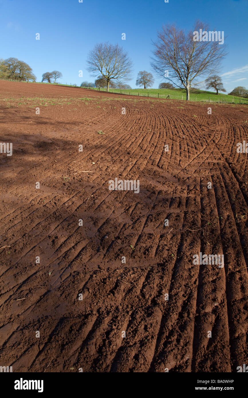 Farming land along the sandstone trail in Cheshire - Stock Image