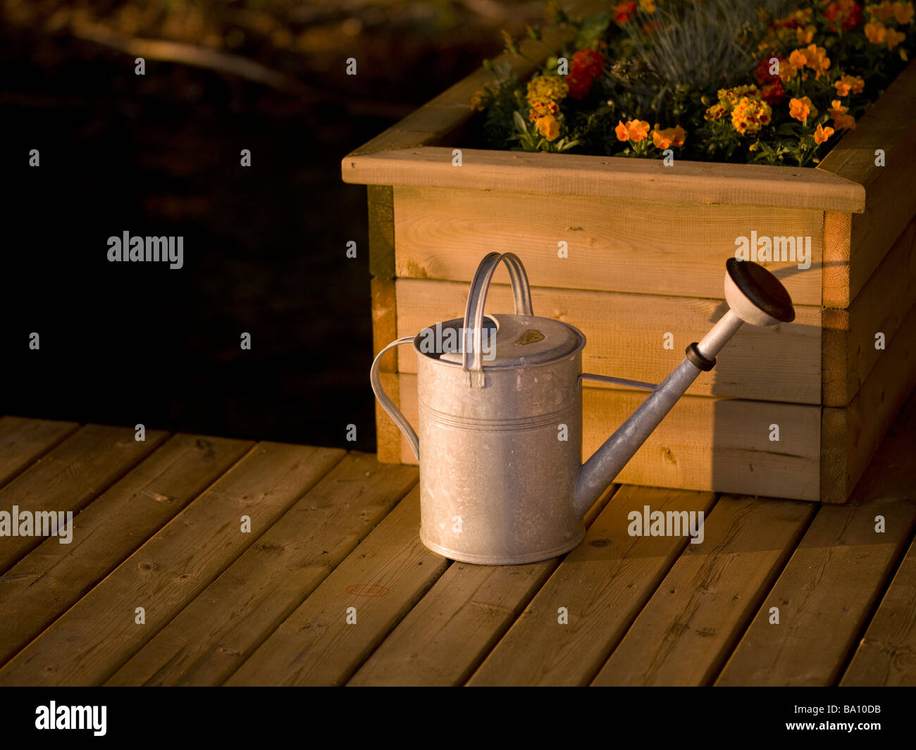 Watering can and flower box - Stock Image