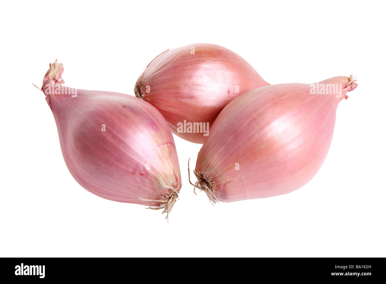 Shallots cutout on white background Stock Photo