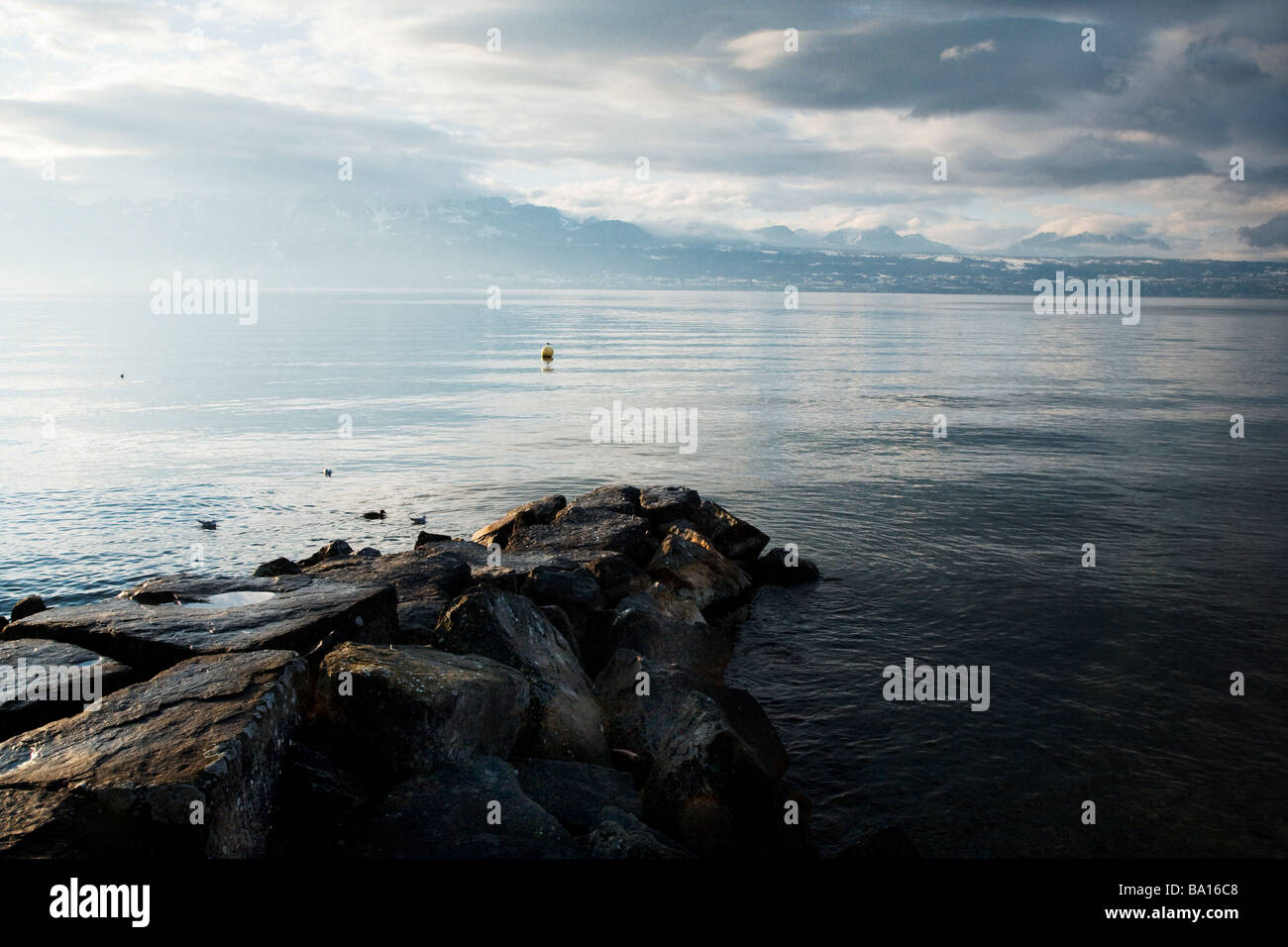 Shoreline of Geneva lake - Stock Image