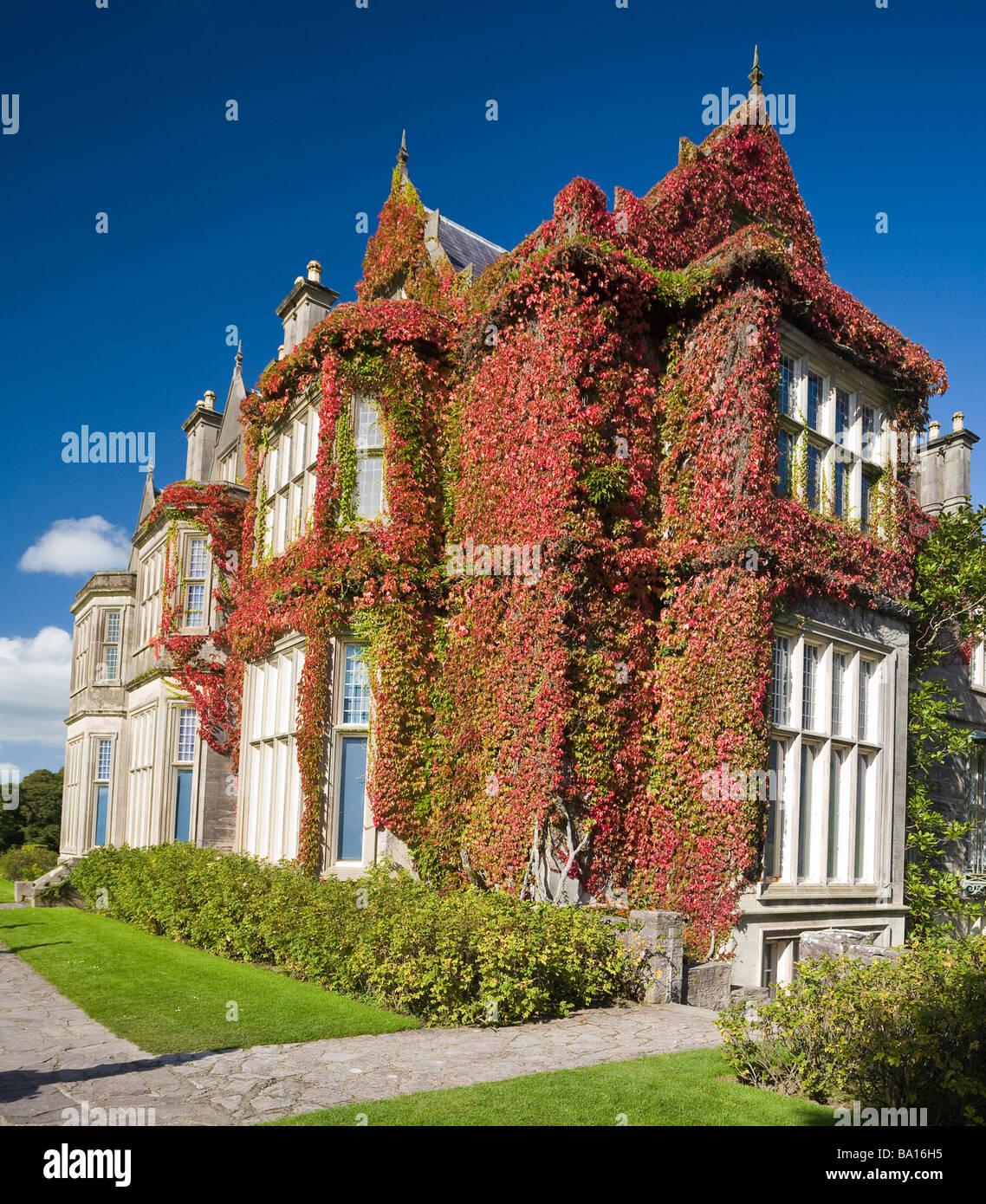 Vine Covered House Stock Photos  U0026 Vine Covered House Stock