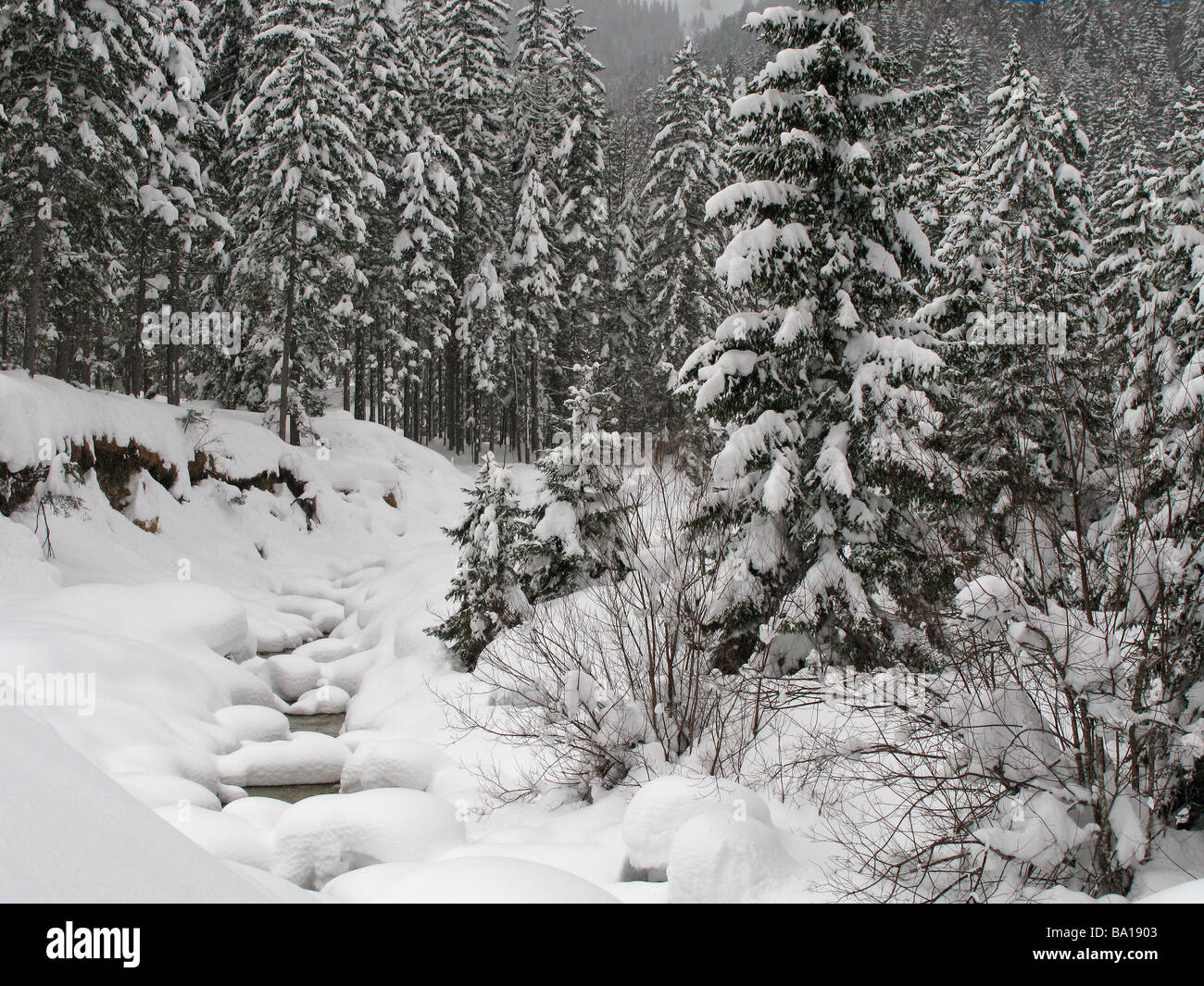 Frozen Stream Deutsch