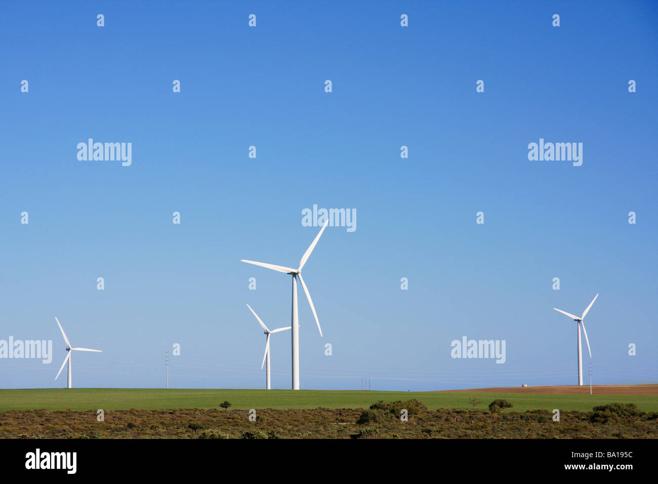 Wind farm - Stock Image