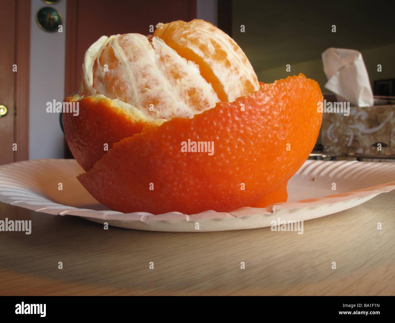 Mineola orange peeled on paper plate. - Stock Image