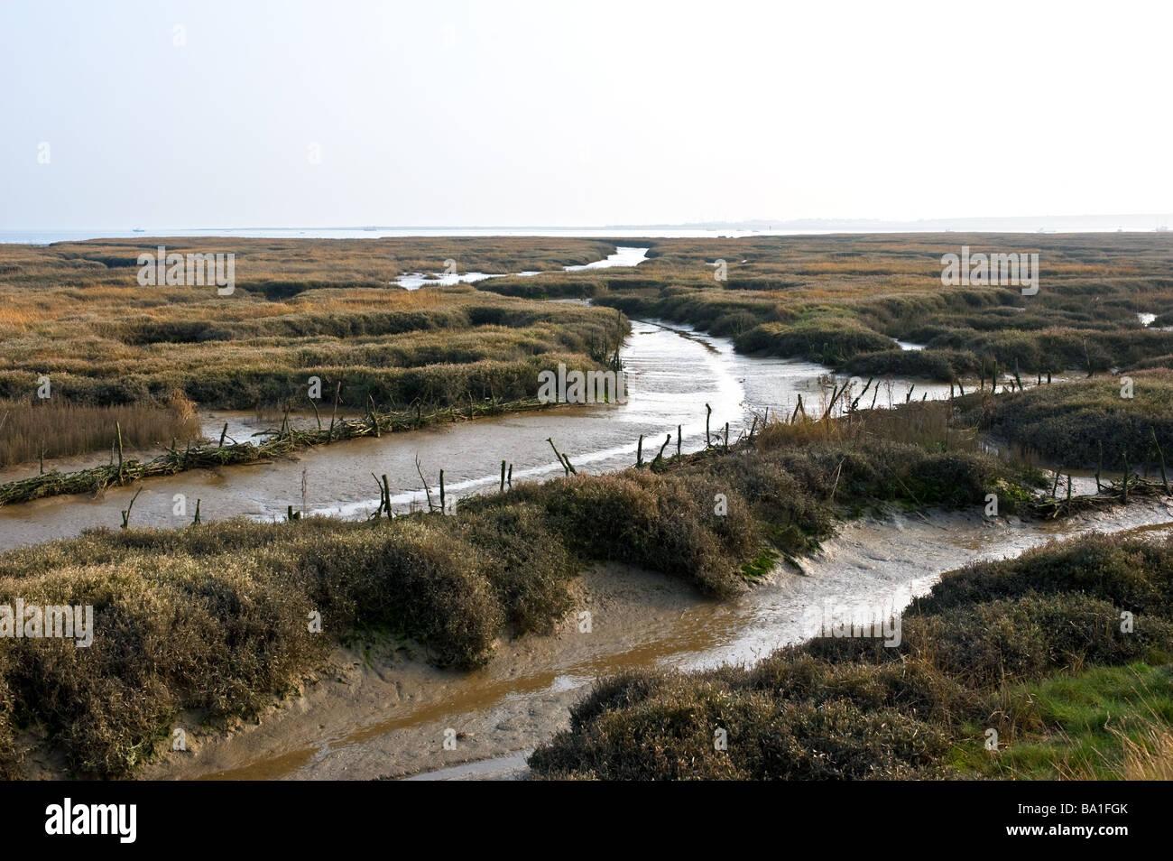 Saltings on the Essex coast Stock Photo