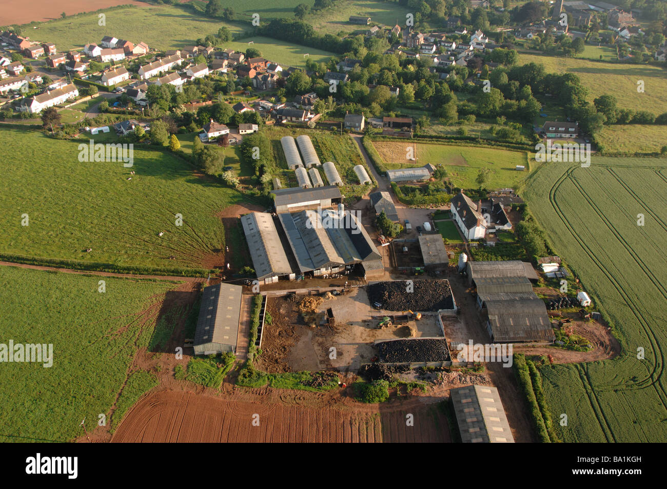 View from the air of large lowland farm probably dairy near Halberton Village in Mid Devon - Stock Image