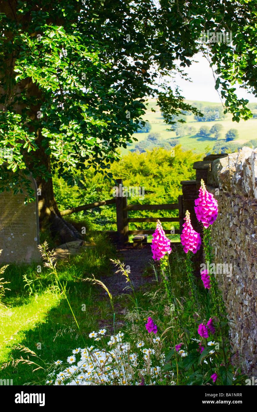 St Illtyd churchyard nr Aberbeeg Llanhilleth Torfaen Blaenau Gwent Wales - Stock Image