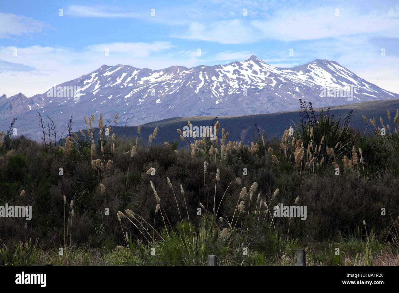 Mount Ruapahu from the overlander newzealand - Stock Image