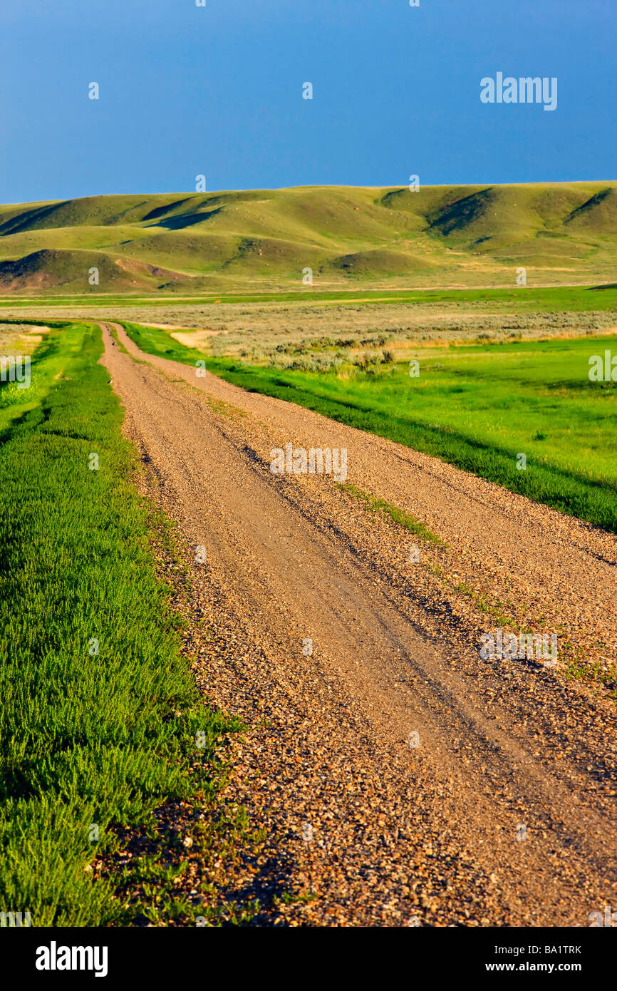 Frenchman River Valley Ecotour Route through the Frenchman River Valley in the West Block Grasslands National Park - Stock Image