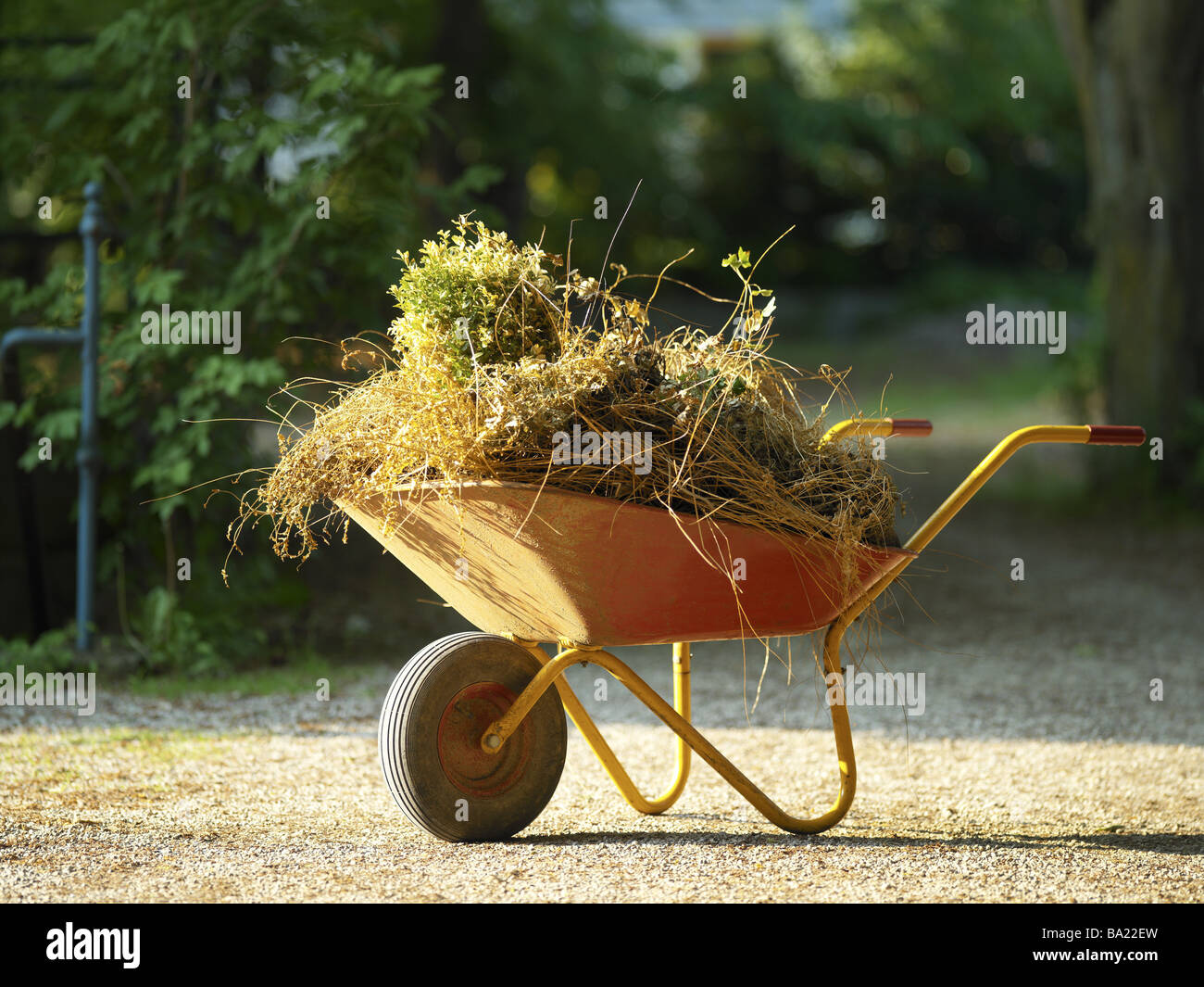 Grit Gardening Stock Photos & Grit Gardening Stock Images - Alamy