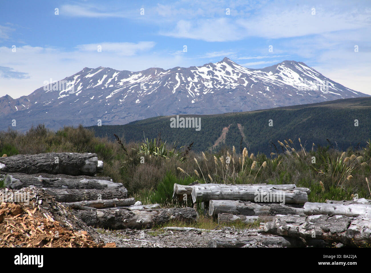 Mount Ruapahu from the overlander train at national park staion newzealand - Stock Image