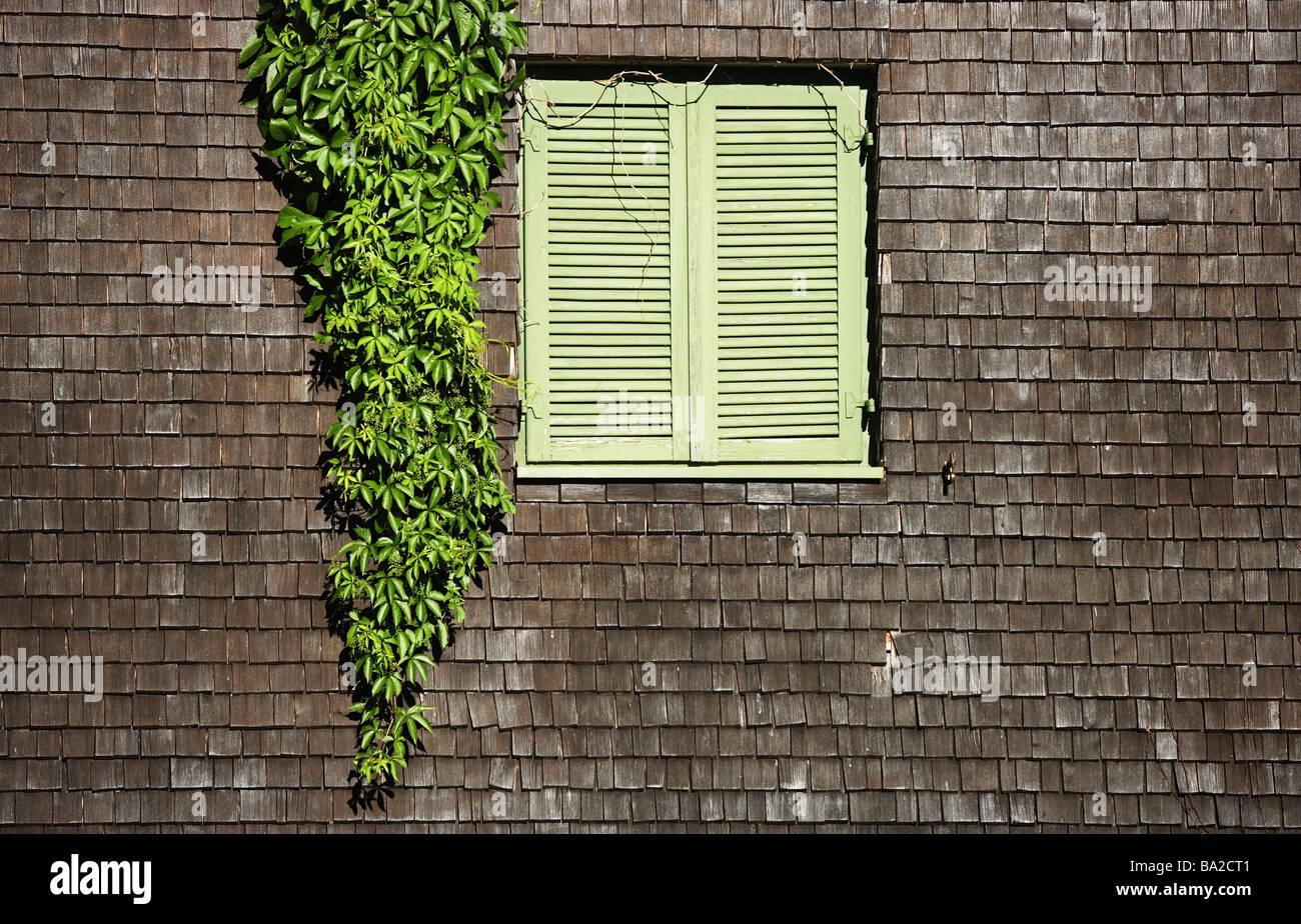House Detail Shingle Facade Shutters Fassadenbegrunung Closed Stock
