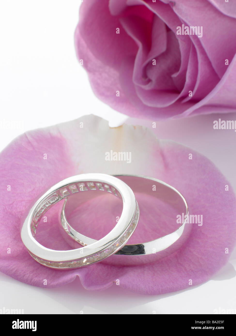 Silver Wedding Rings Resting On Rose Petals Stock Photo: 23411963 ...