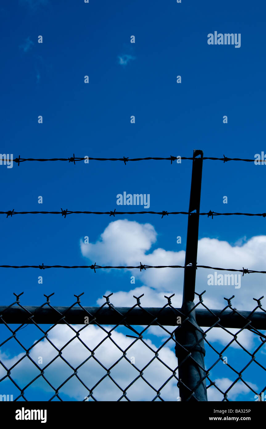 Barbwire fence - Stock Image