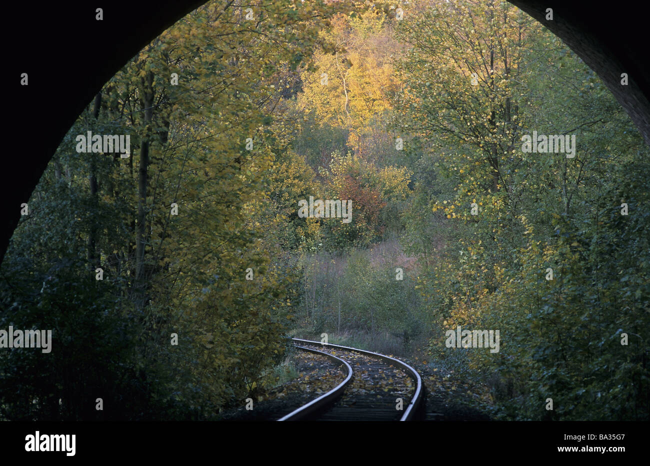 Railroad-tunnels exit gaze forest autumn track tunnels