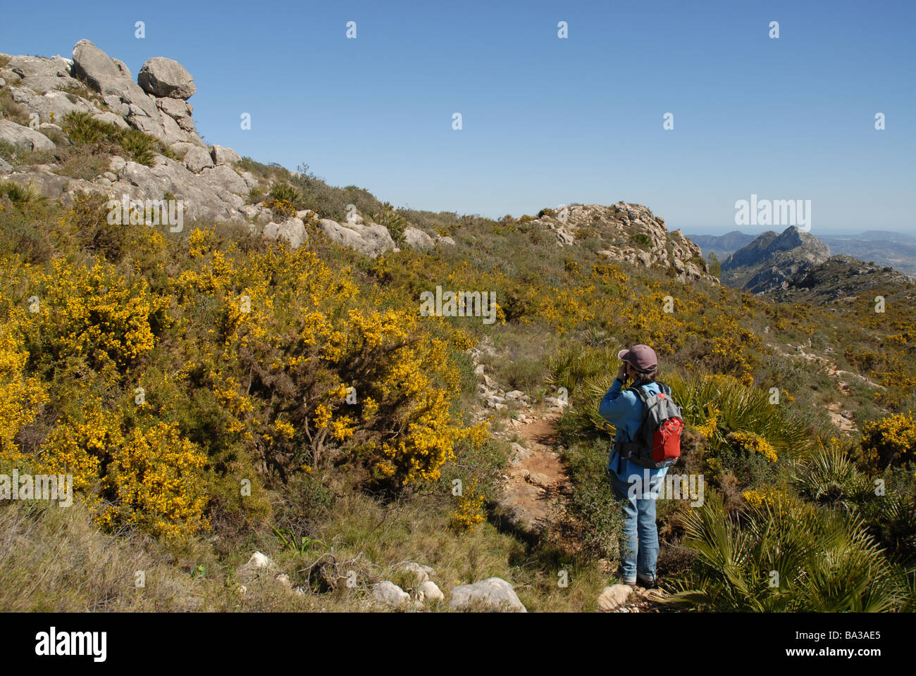 woman hiker on Penya Roig with Cavall Verd in distance, near Benimaurell, Alicante Province, Comunidad Valencia, - Stock Image
