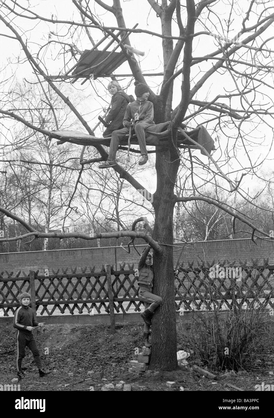 Seventies, black and white photo, people, children, four boys playing at a tree house, childrens playground, aged - Stock Image