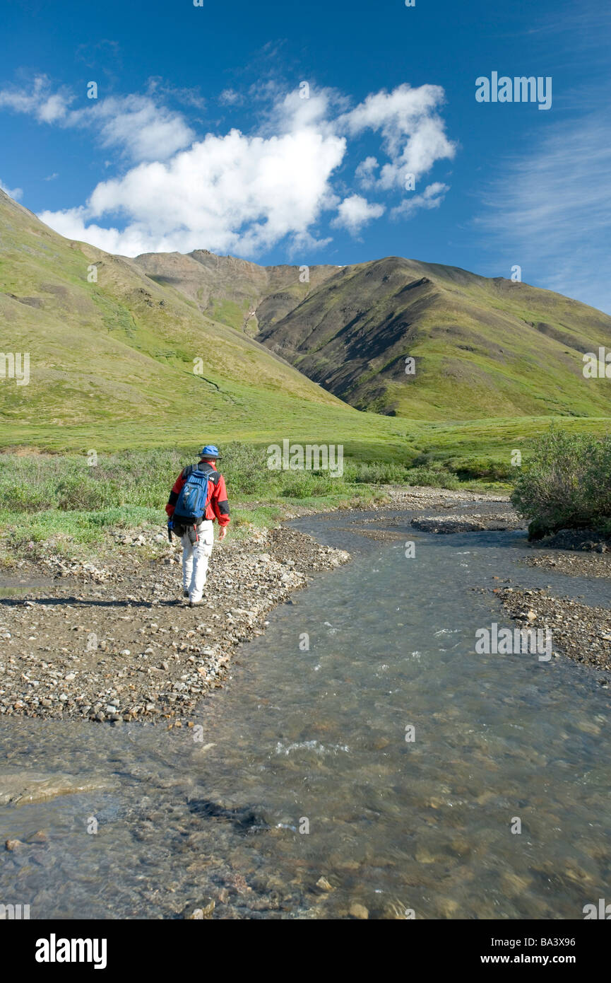 Man fills his water bottle while hiking along Chandalar River in the Brooks Range during Summer in Arctic Alaska - Stock Image