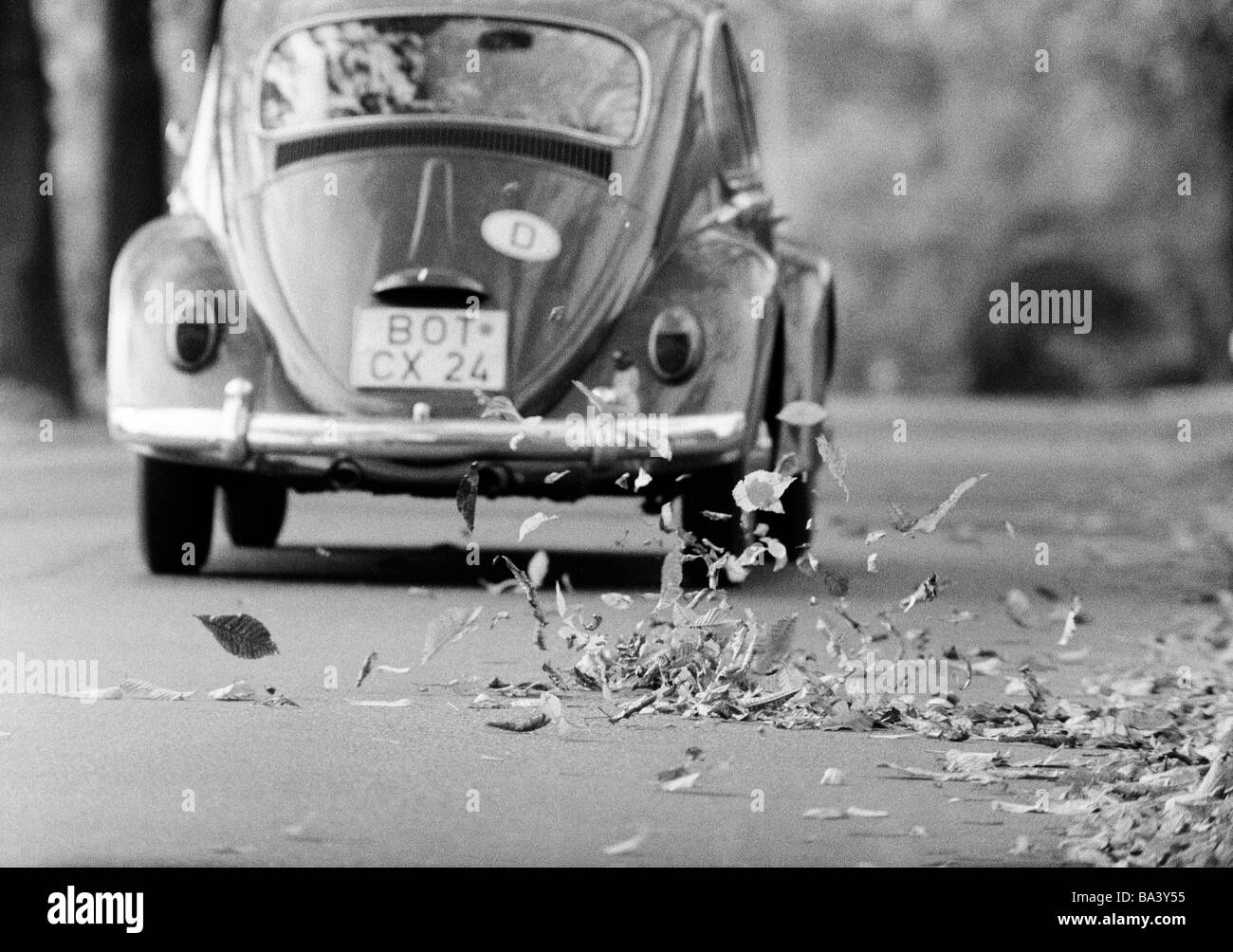 Seventies, black and white photo, autumn, autumn leaves on the street swirled up by a passing motorcar, VW-Beetle, - Stock Image