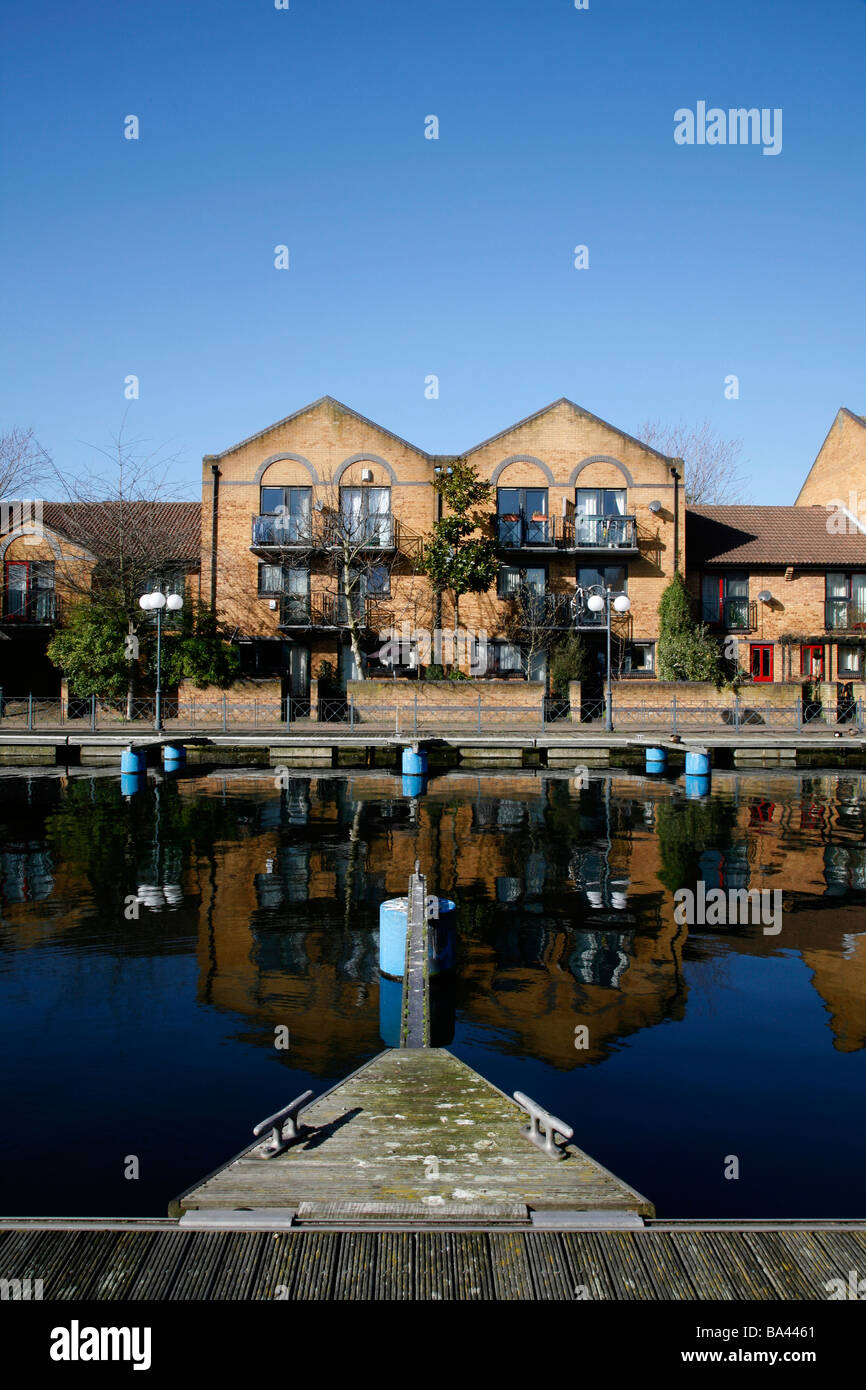 Housing on Millwall Outer Dock, Millwall, Isle of Dogs, London - Stock Image