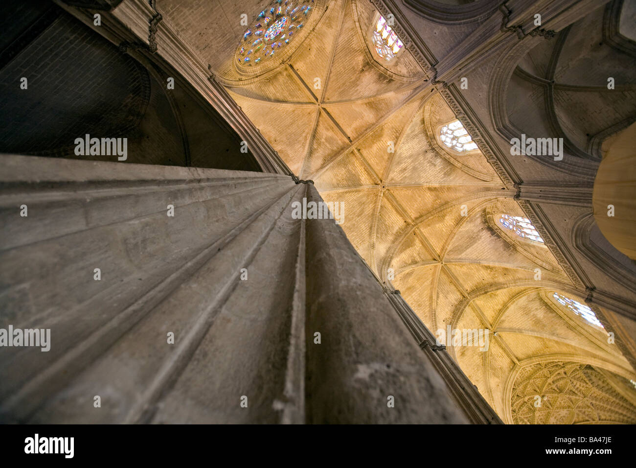 Low angle view of a pillar and the vaults of the Cathedral Town of Seville autonomous community of Andalusia southern - Stock Image