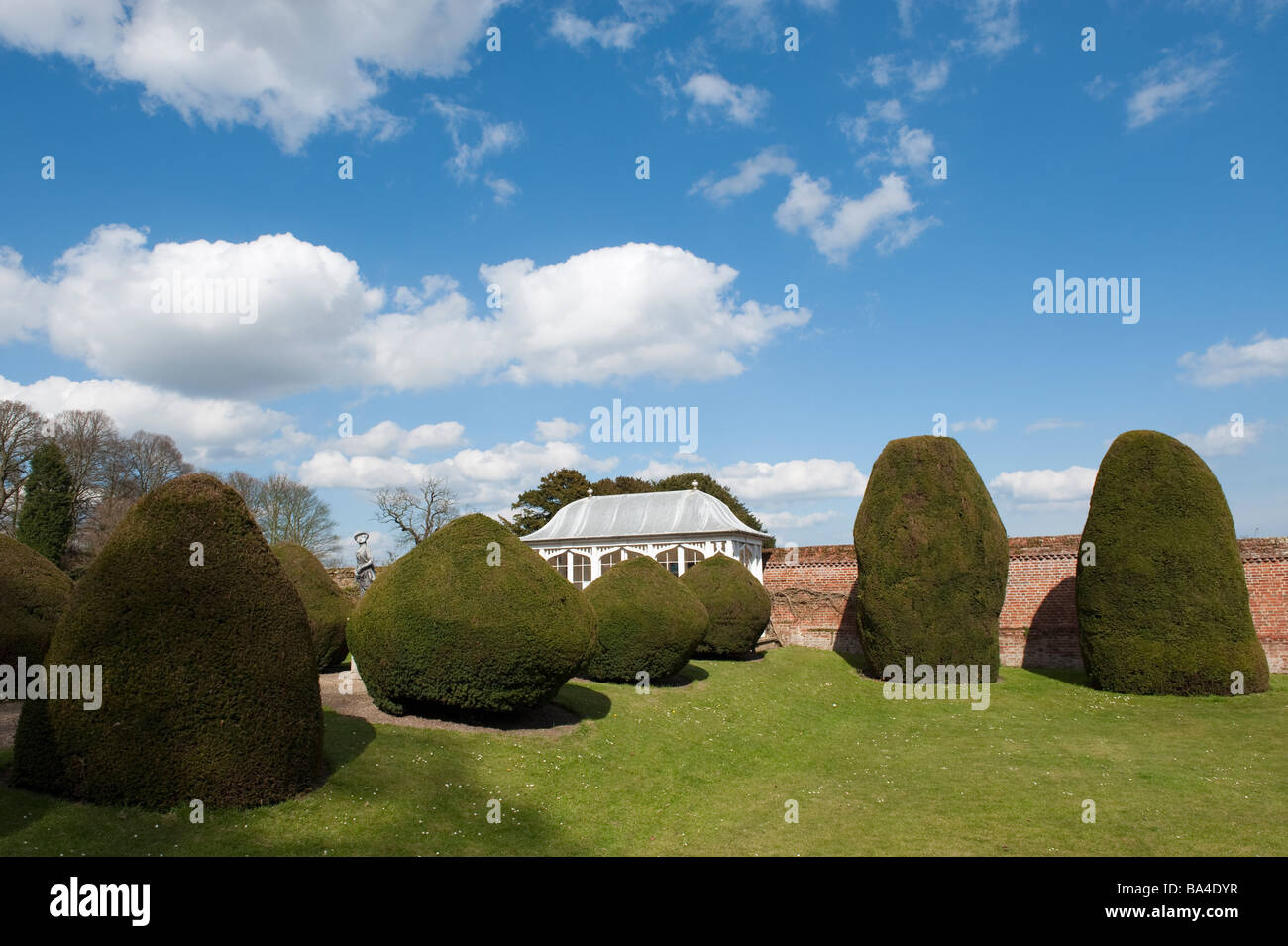 Yew topiary, Yorkshire, England, 'Great Britain' 'United Kingdom' - Stock Image