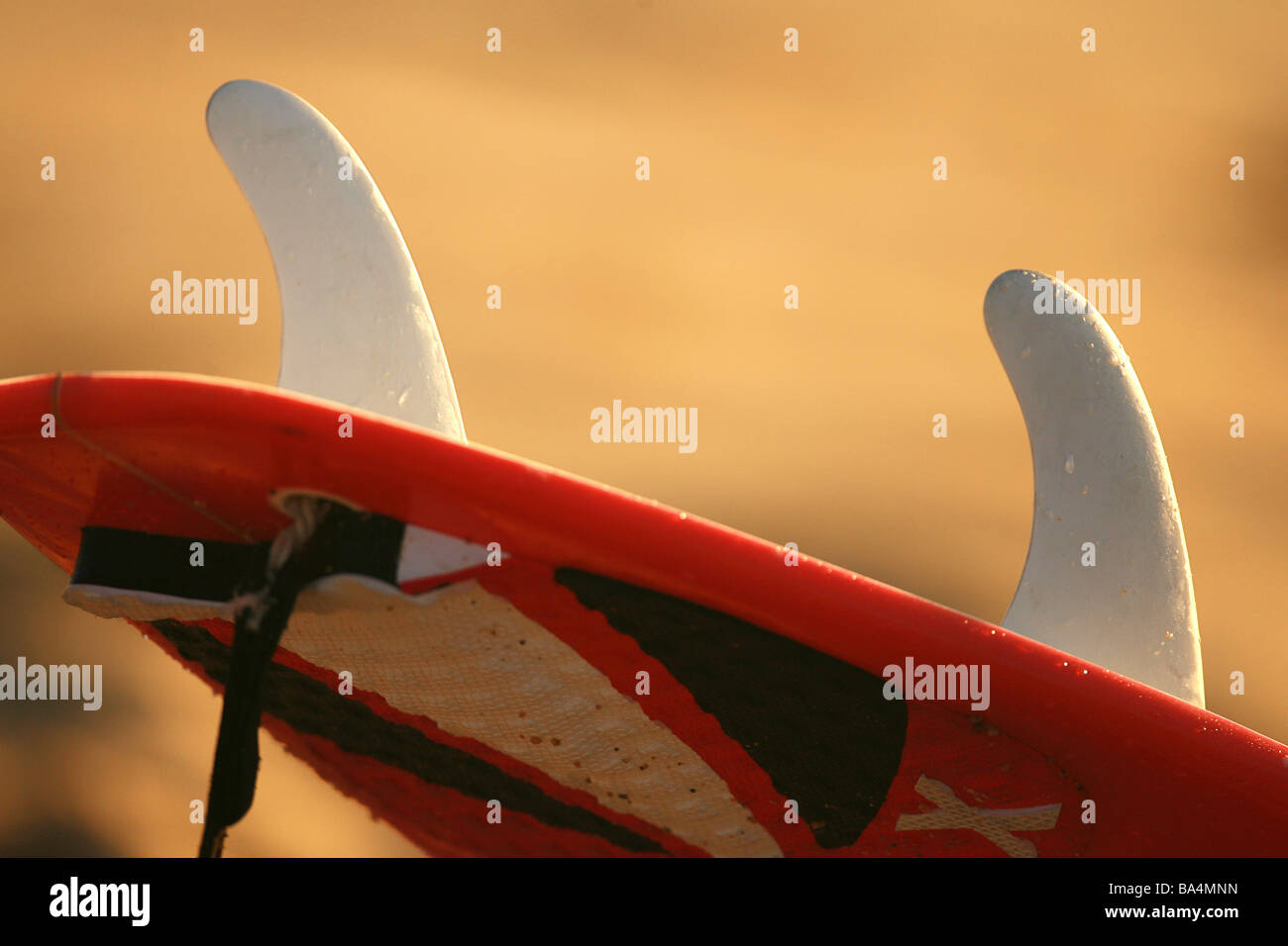 Detail of a Surfboard - Stock Image