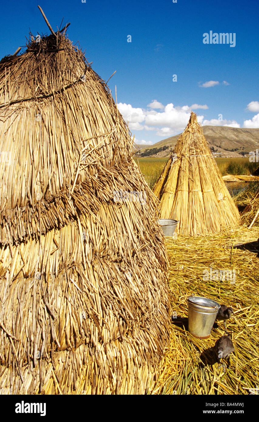 Floating islands and Huts of the Uros peoples of lake Titikaka with two yanavicos (Ibis Plegadis Ridgewayi). - Stock Image