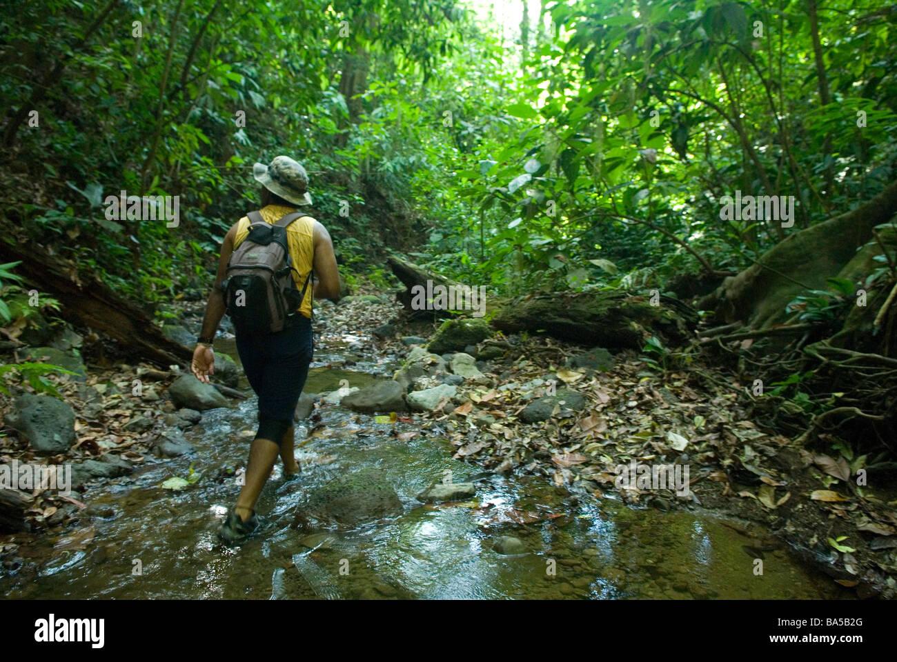 A big cat researcher patrols Corcovado National Park - Stock Image