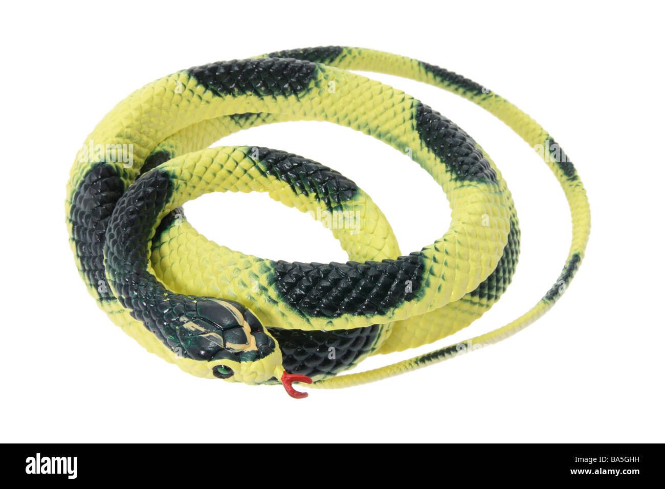 Rubber Snake - Stock Image