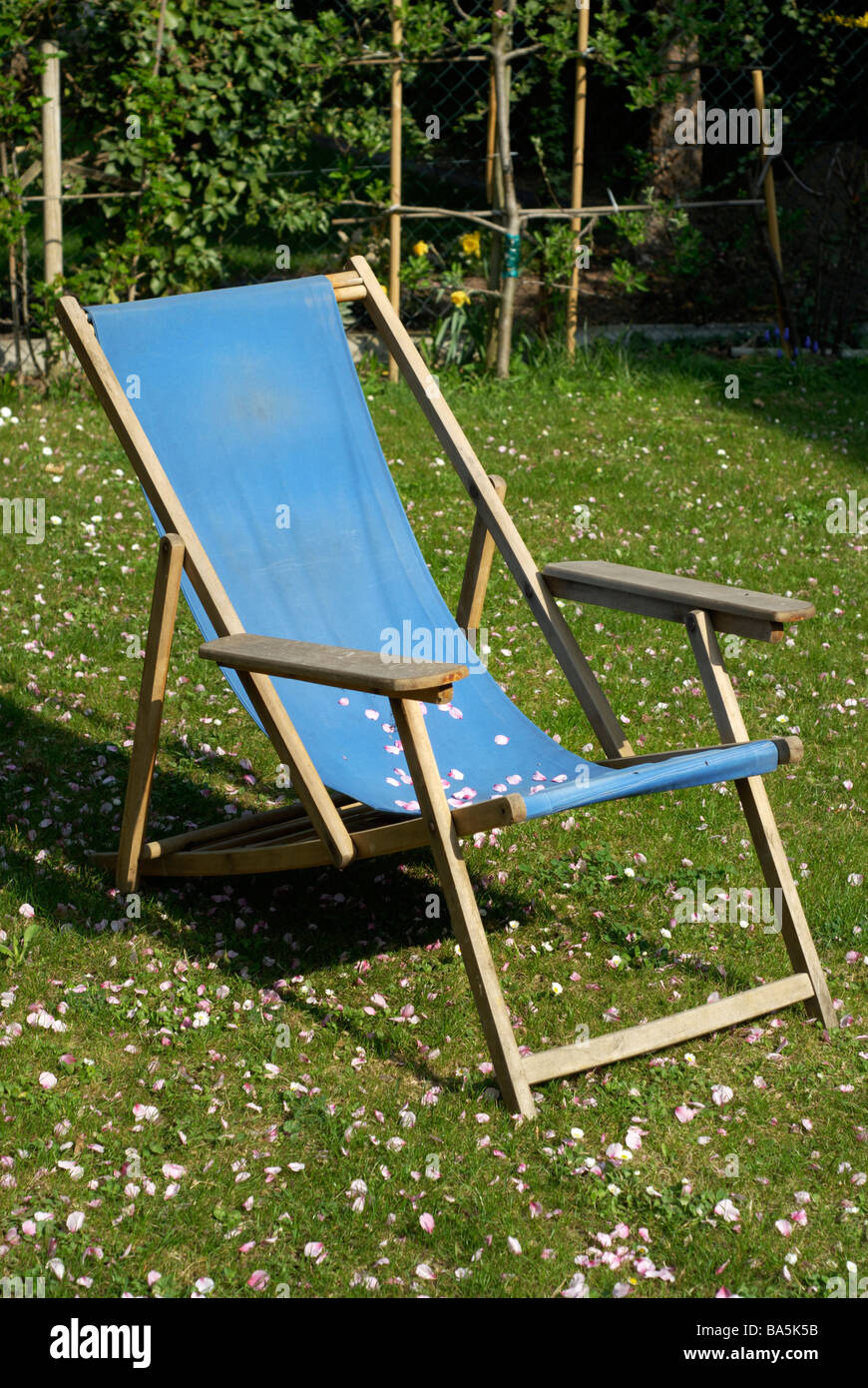 Deck chair covered by petals - Stock Image
