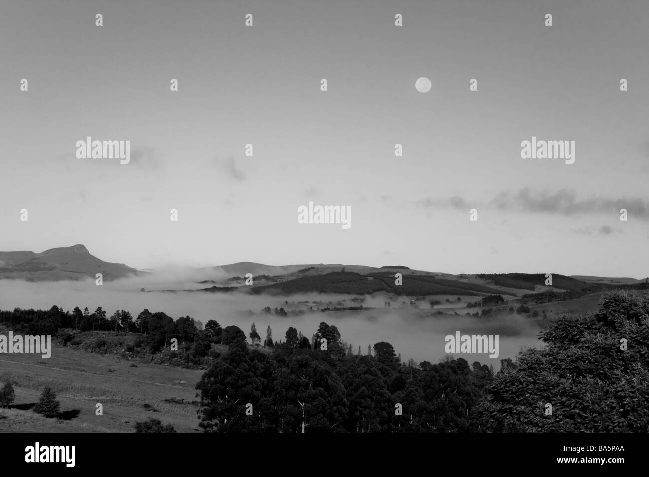Early morning mist in valley black and white Stock Photo