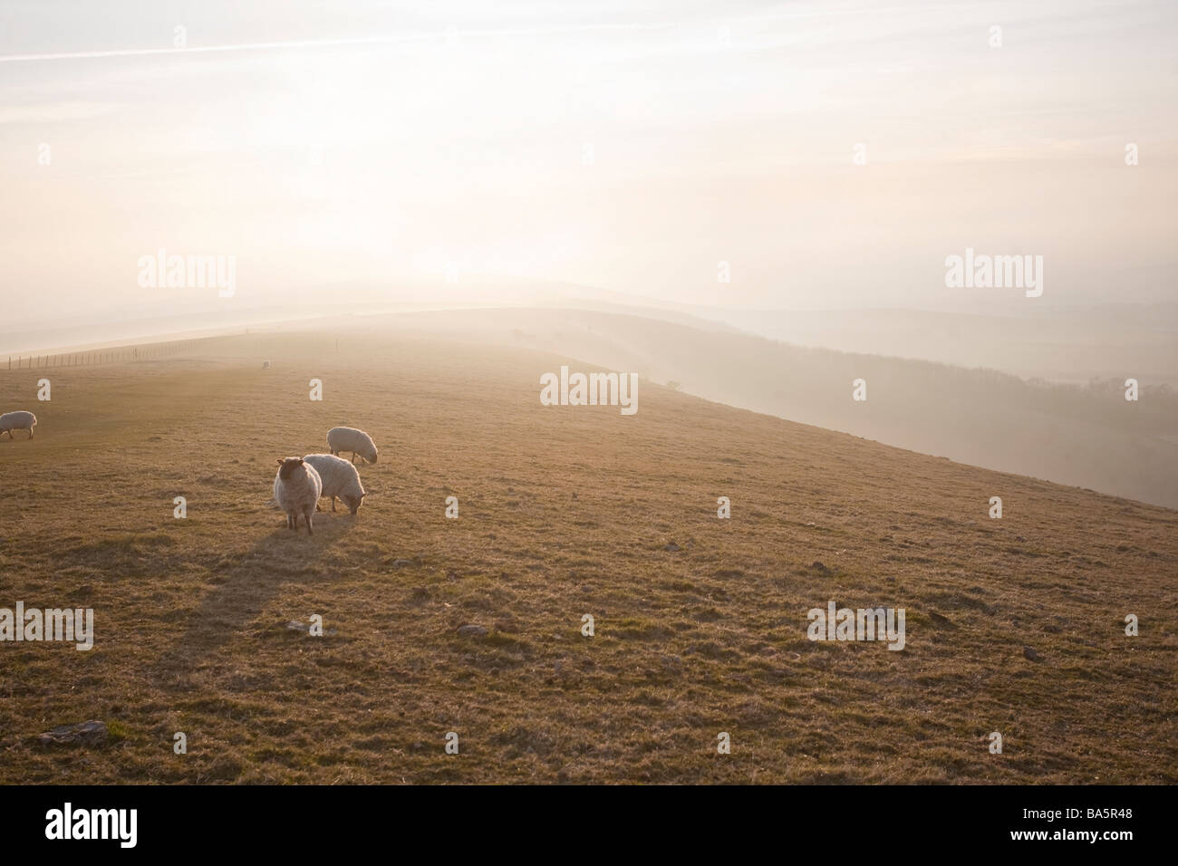 Just before sunset on The South Downs. near Alfriston, East Sussex, England, UK - Stock Image
