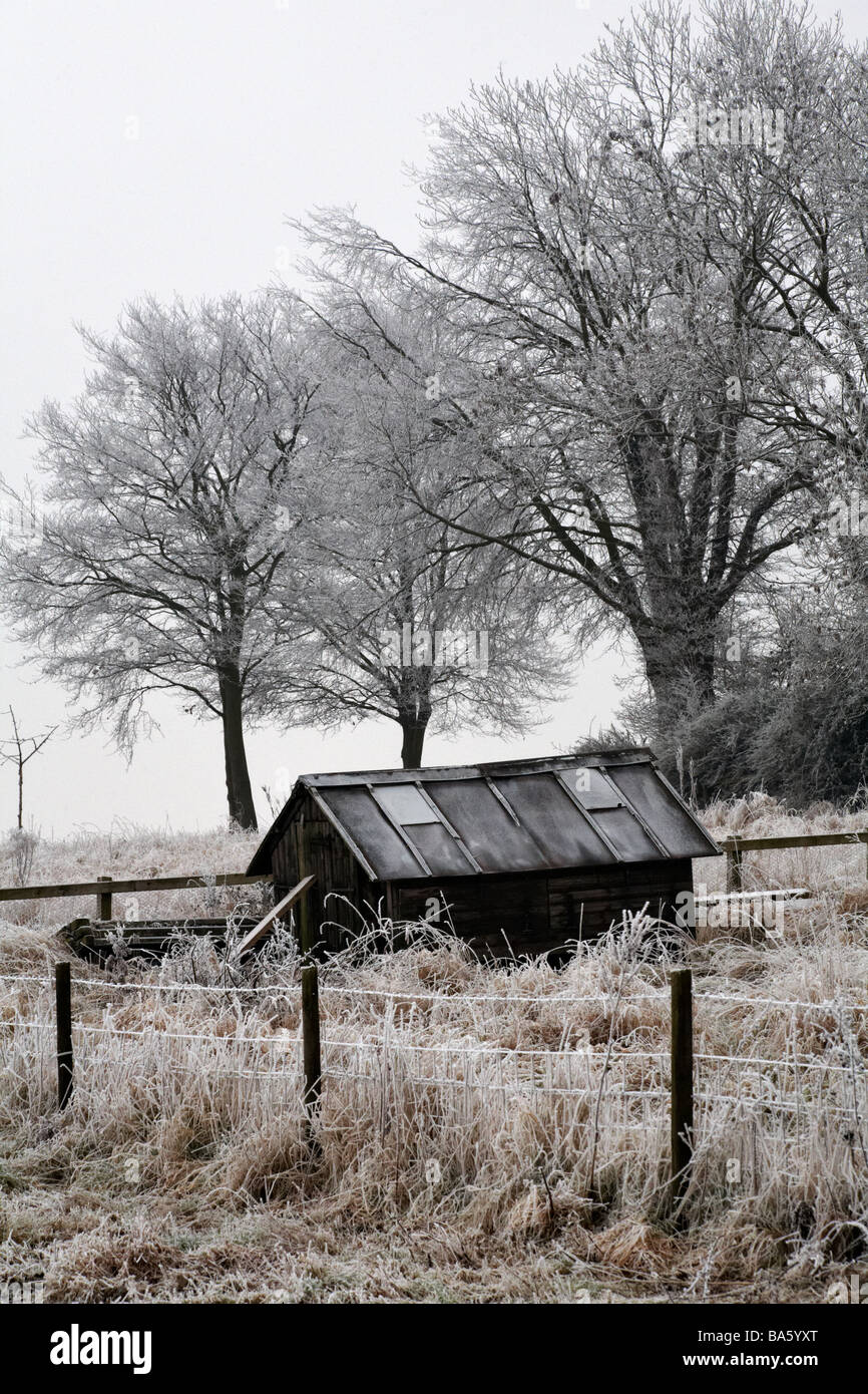 shed and trees covered with hoar frost at Wiltshire in January - Stock Image