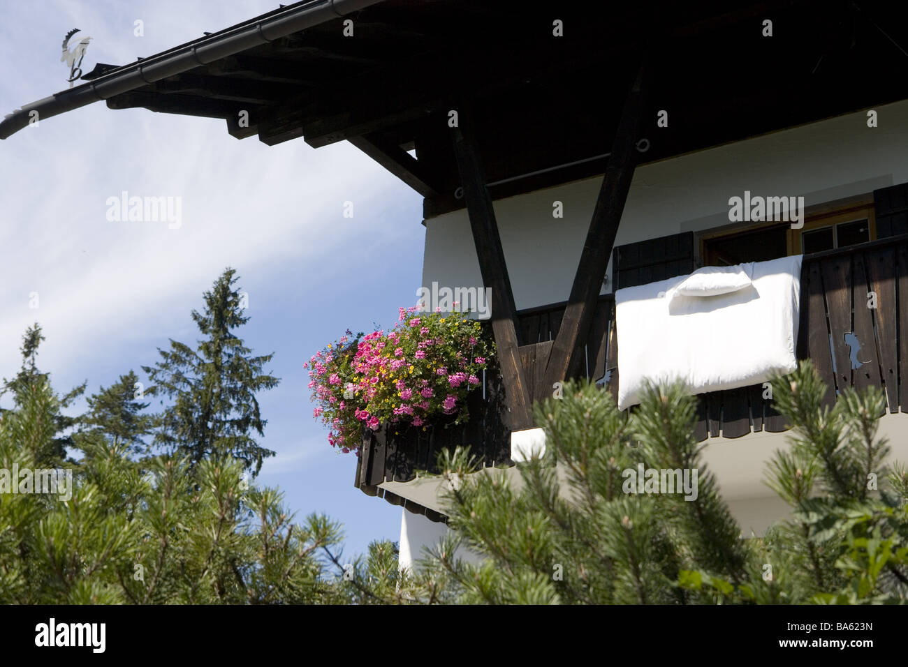 Residence detail balcony flowers bedding airs house Alps-house forest trees idylls vacation vacation house balcony - Stock Image