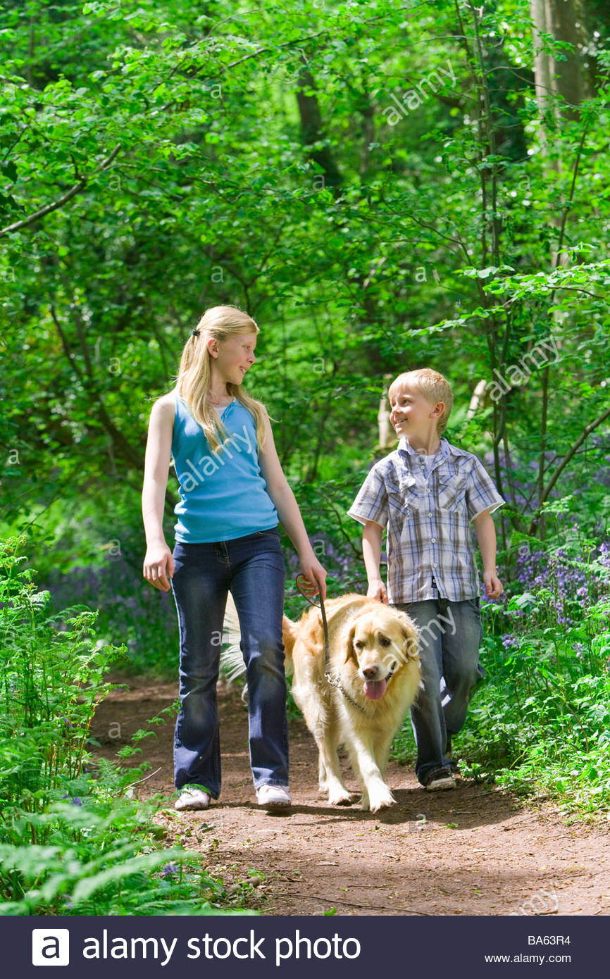 Children and dog walking in forest among bluebell flowers - Stock Image