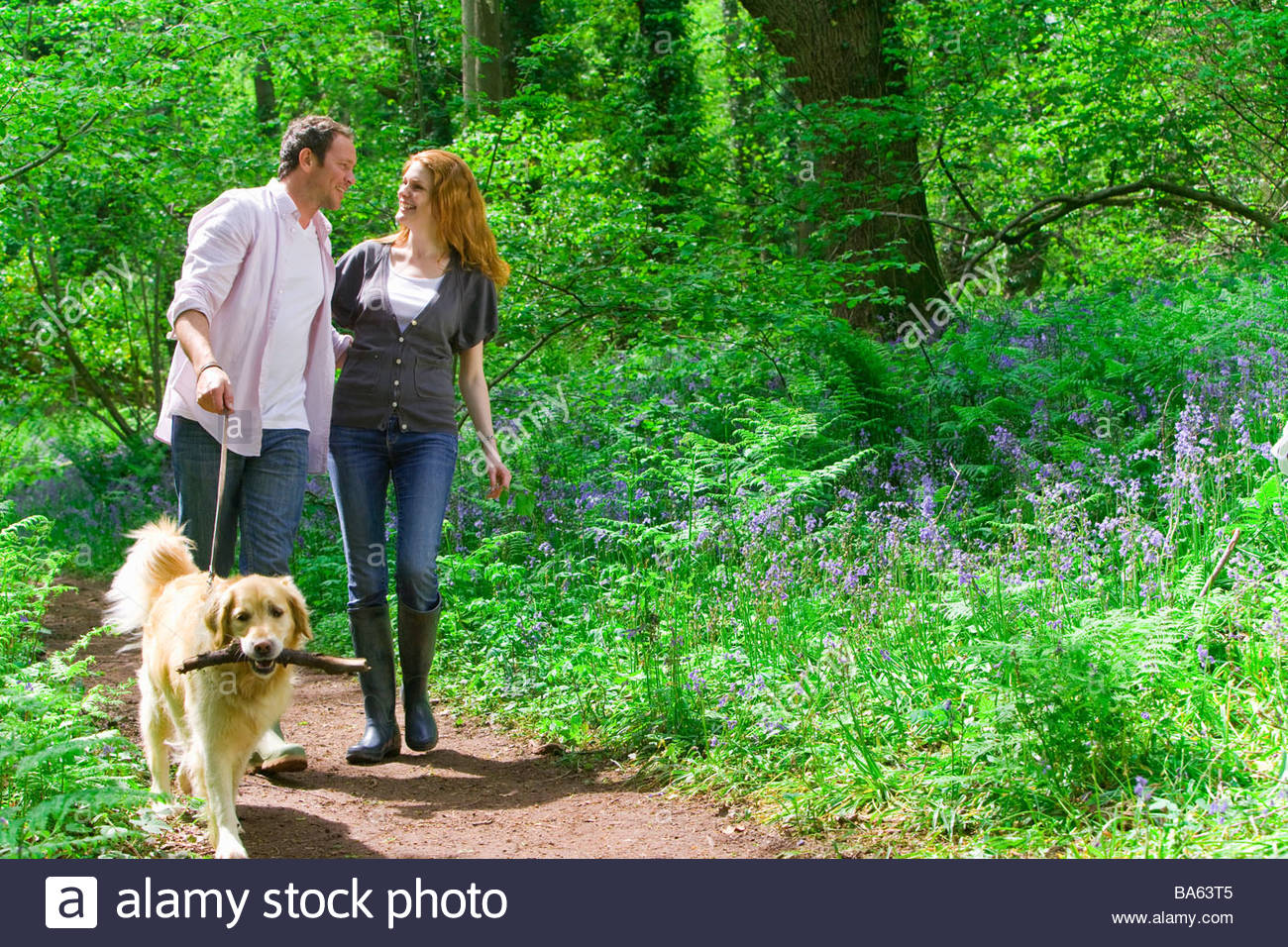 Couple and dog walking in forest among bluebell flowers - Stock Image