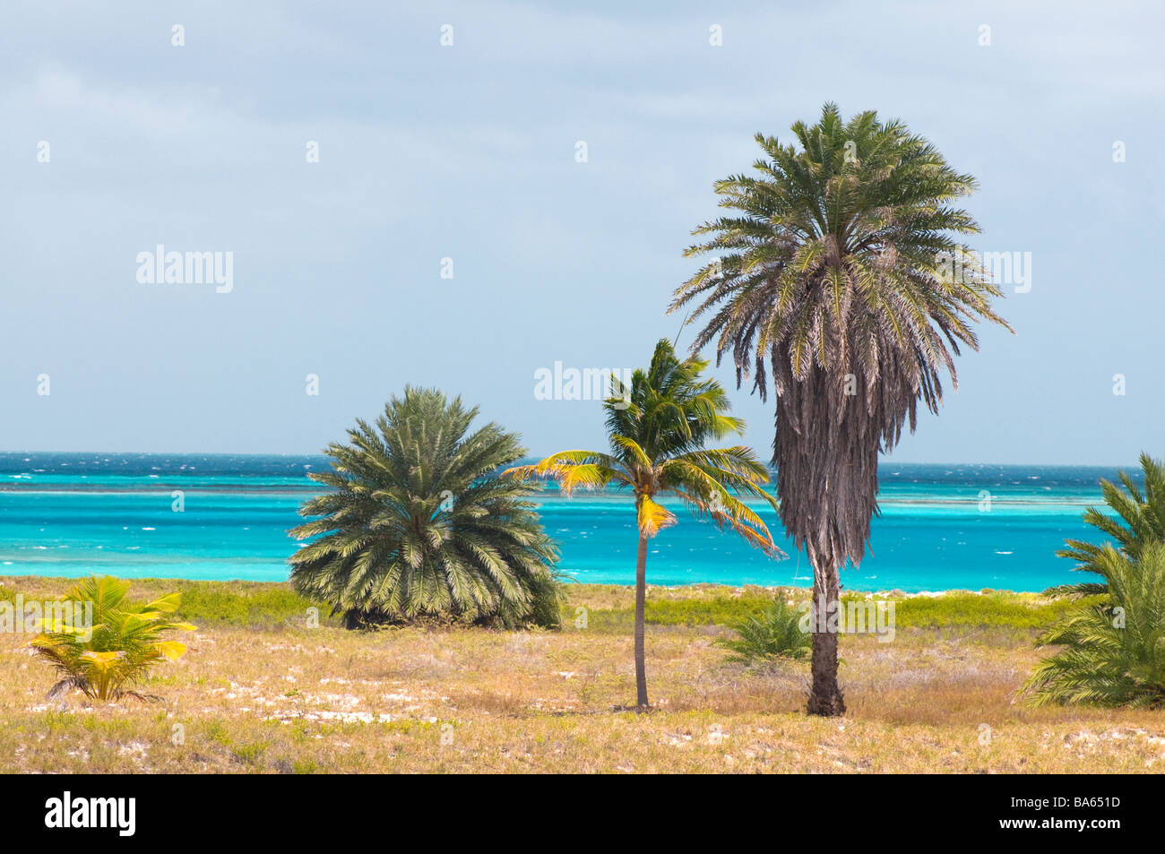 Deserted tropical island  Los Roques Venezuela South America - Stock Image