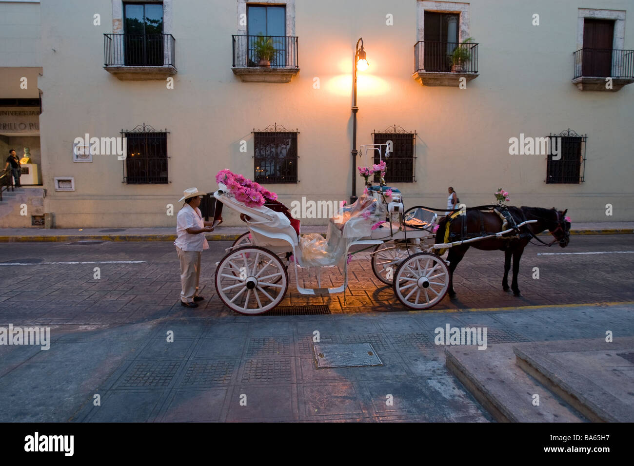 A carriage driver with horse and carriage in Merida Mexico Stock Photo
