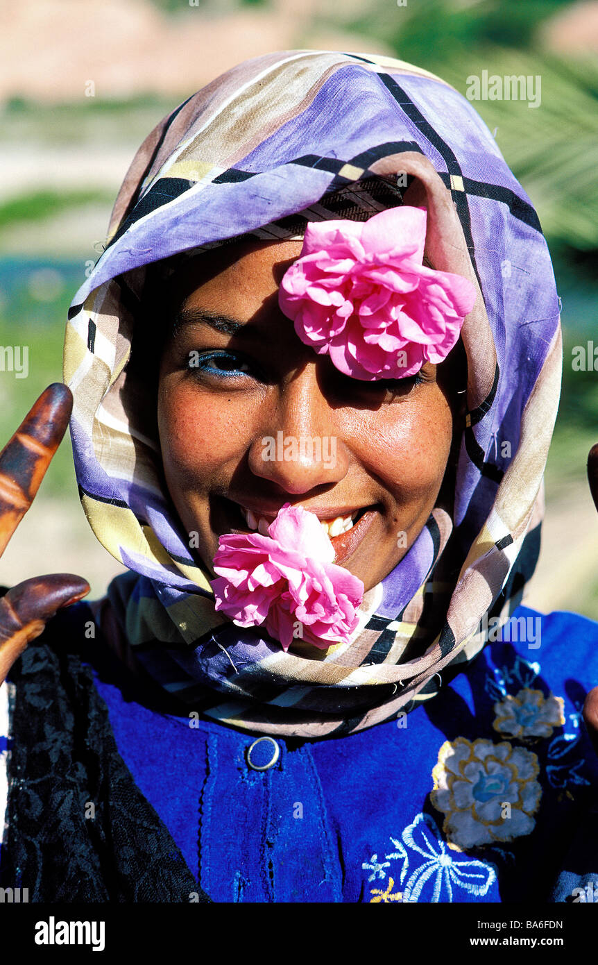 Morocco, High Atlas, Dades Valley, Valley of Roses, picking of the roses, young Berber woman - Stock Image