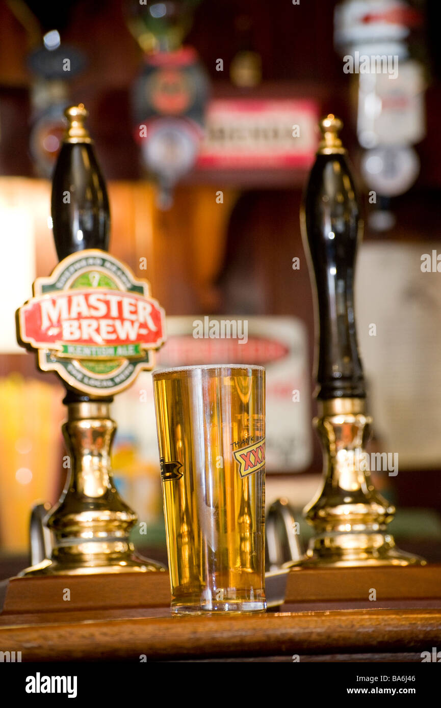 Pint of lager on a pub bar in an English public house - Stock Image