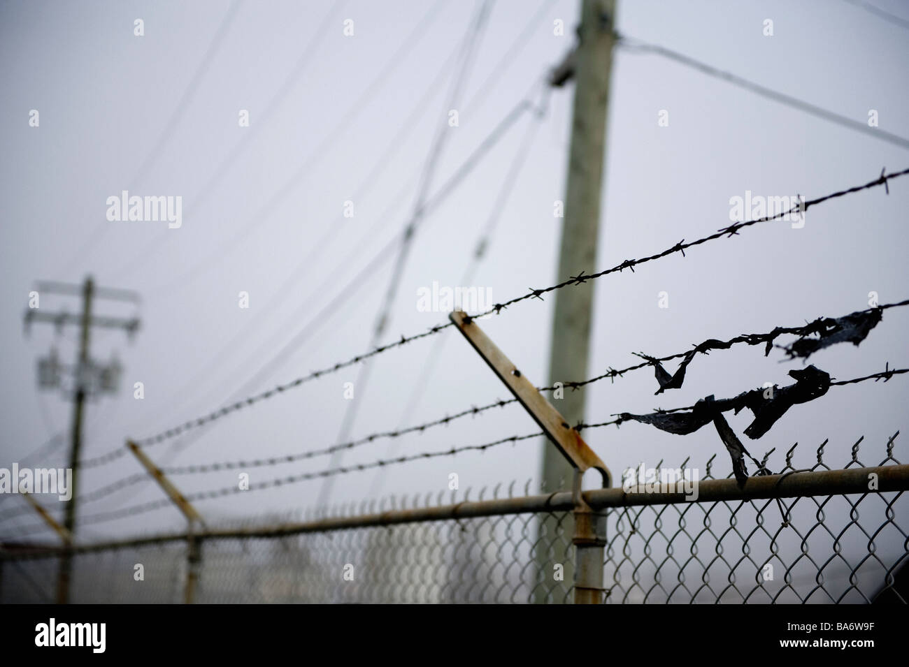 Scraps of fabric caught on a barbed wire fence - Stock Image