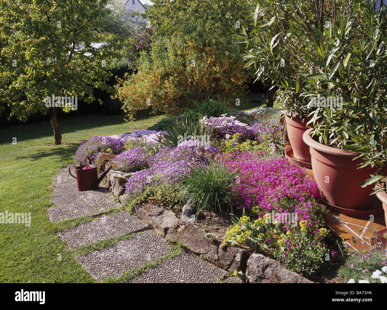 Garden Flower Bed Rockery Flowers Way Meadow Summers Terrace Lawns Trees  Shrubs Plate Way Bed Plants Ornament Plants Potted