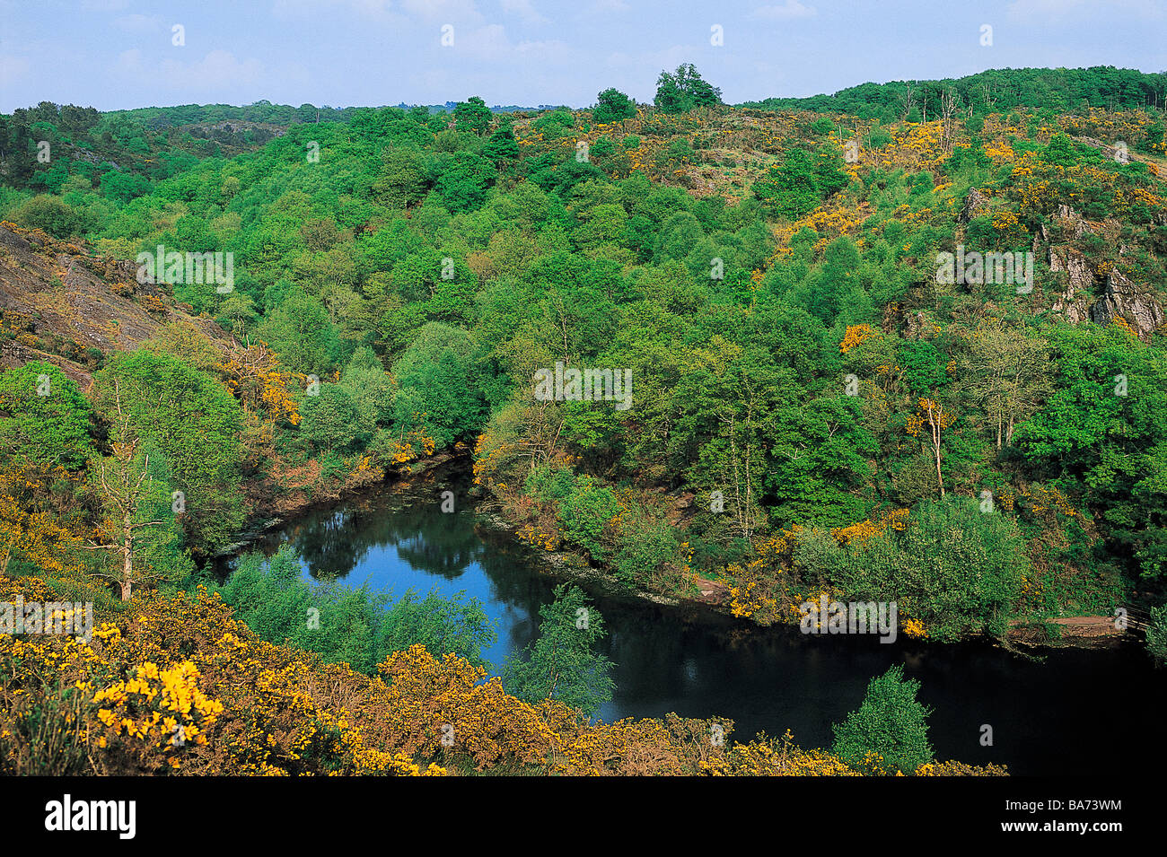 France, Ille et Vilaine, the Mare aux Fees (the Fairy Pond) of the Val sans Retour (Valley of No Return) in the - Stock Image