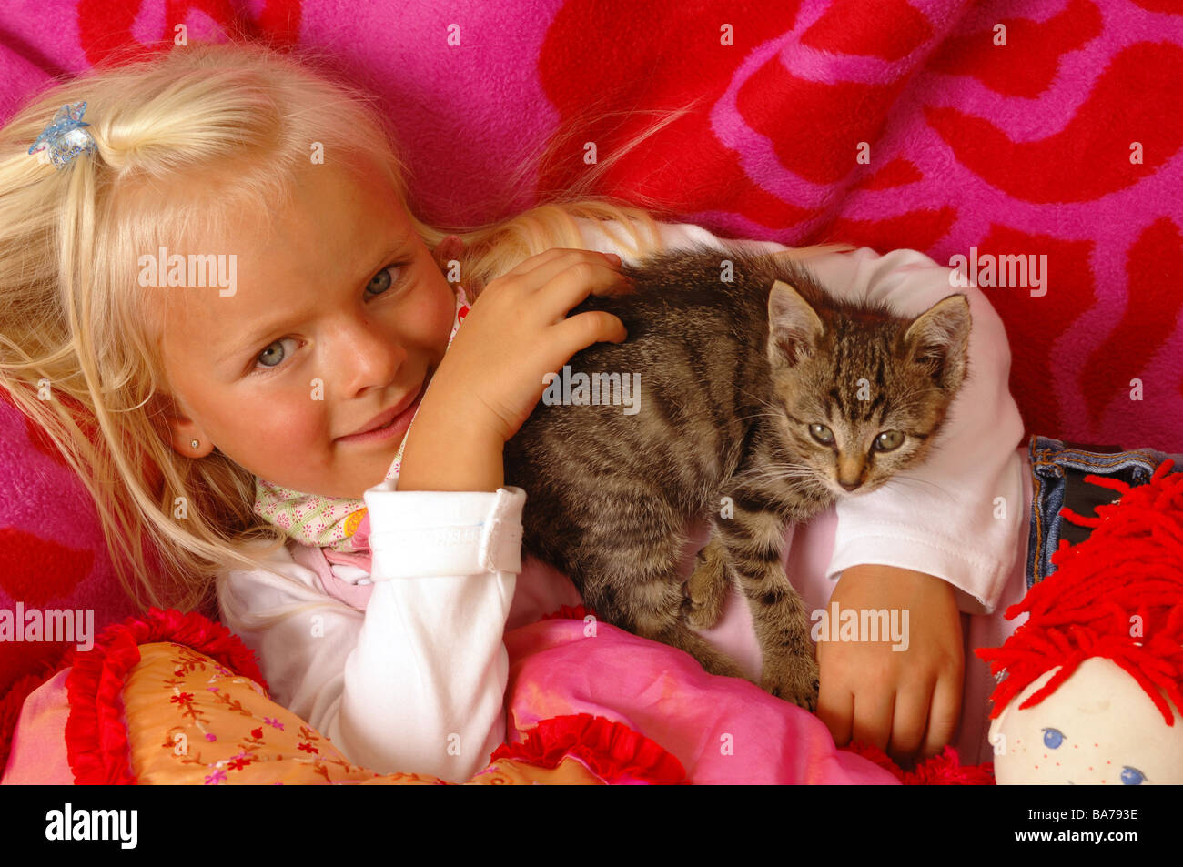 Girls smiles kittens doll cuddle lies portrait series people 5 years child-portrait child toddler blond gaze camera childhood Stock Photo