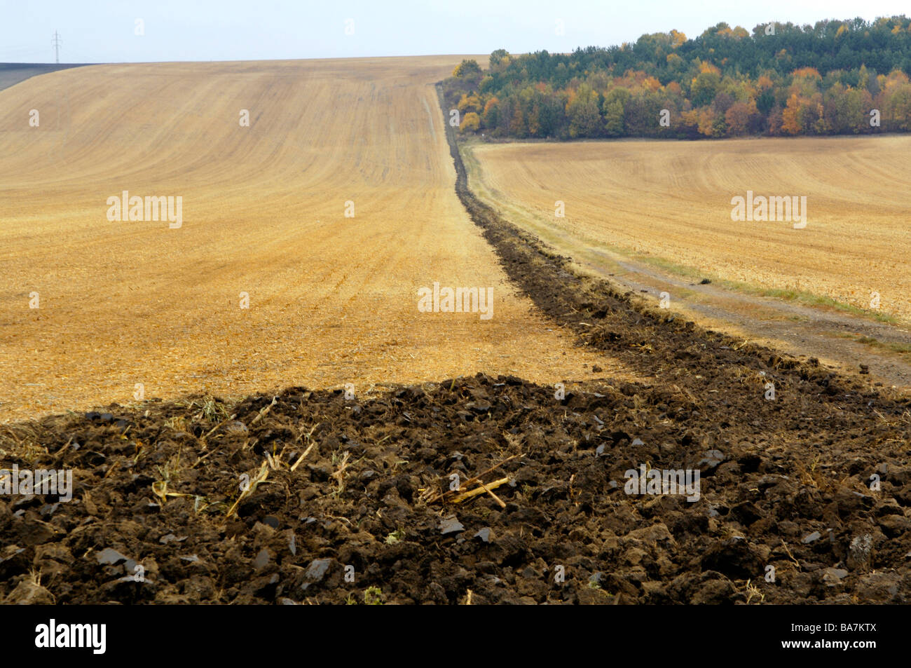 Fields, Slavkov, Austerlitz, Czech Republic - Stock Image