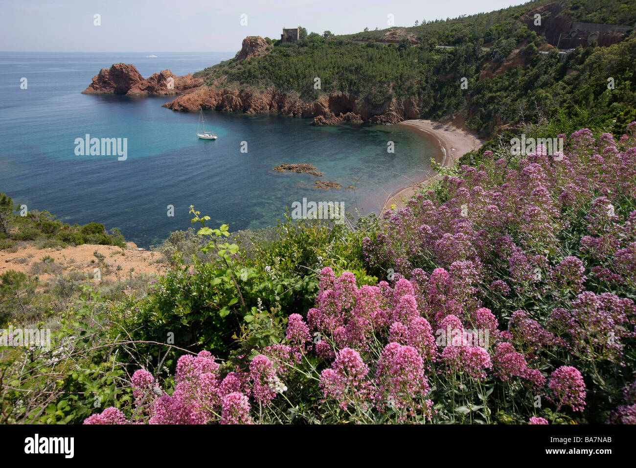 View of the beach and coastal landscape at Cap Roux, Cote d'Azur, Provence, France - Stock Image